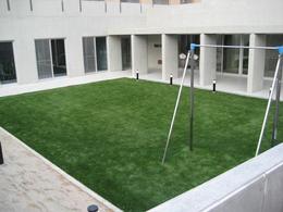 中庭1.JPG