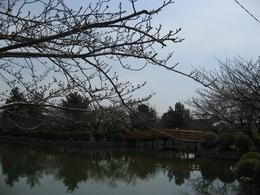 九華公園.JPG