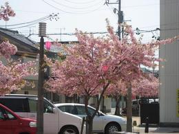 寺町.JPGのサムネール画像