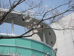 市民会館.JPG