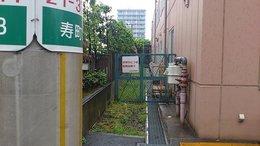 山本1_org.jpg