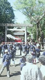 金魚祭り3.jpgのサムネール画像