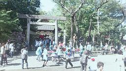 金魚祭り4.jpg
