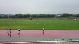 障がい者スポーツ大会 (9).JPG
