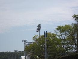 伊勢菓子博 (3).JPG