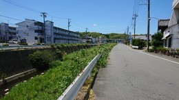 大山田川付近の市道環境 (1).JPG