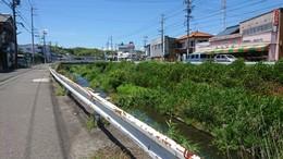 大山田川付近の市道環境 (2).JPG