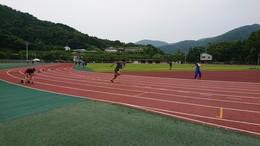 2019三重県選手権陸上競技大会 (4).JPG