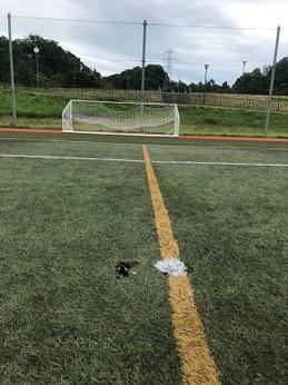 NTN総合運動公園サッカーメイン (1).JPG