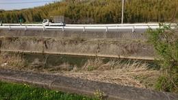 大山田川20210401 (1).JPG