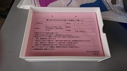 1日開放 (1).JPG